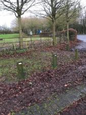 Grounds maintenance improvement undertaken at John Flamsteed Memorial Park